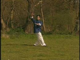 Kung Fu BaGau Chang Madrid