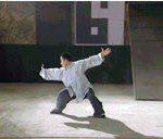 Baji Quan de Kung Fu Madrid